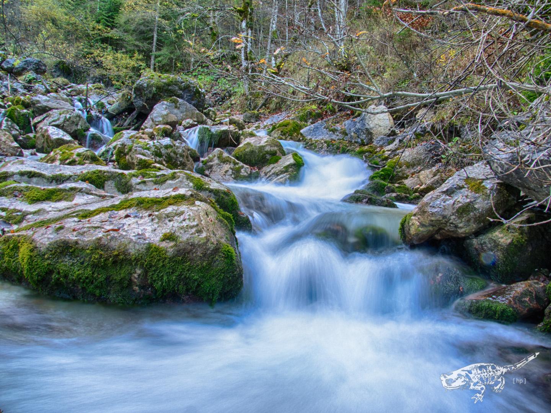 Wasser U2013 Natur In Seiner Schu00f6nsten Form U2013 Angler Blog