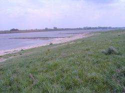 Rheinbuhnen bei 2m Pegel